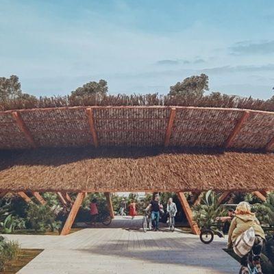 Visión biocultural prevalece en diseño de la estación del Tren Maya en nuevo Xcan